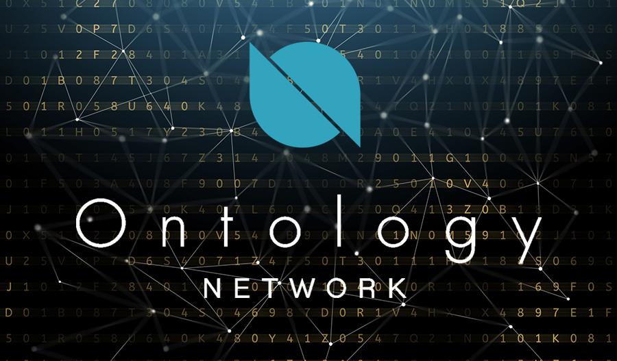 Image result for ontology token