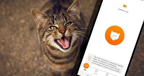 با «MeowTalk» صدای گربهها را ترجمه کنید